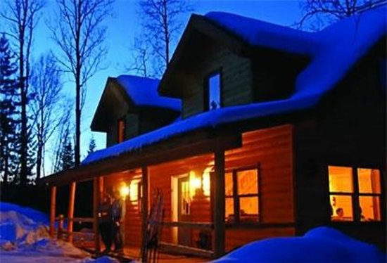 Timber Trail Lodge and Outfitter: Diamond Willow in Winter