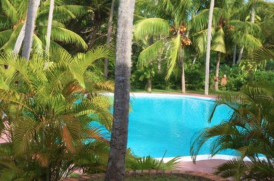 Eva Lanka Hotel: upper pool