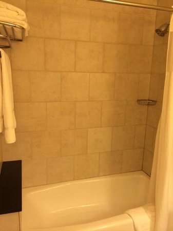 Skyline Hotel: Tub/Shower area
