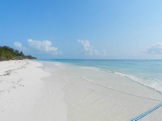 Dongwe Club : spiaggia