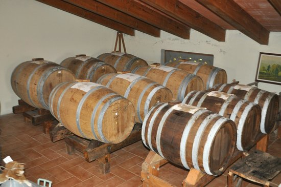 Agriturismo Bosco del Fracasso: Balsamic vinegar aging in wood casks.