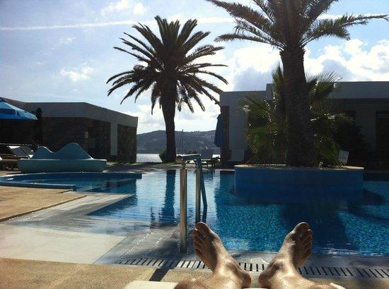 Mykonos Theoxenia : Swimming pool