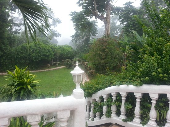 Banana Bank Lodge & Jungle Horseback Adventure: Grounds from outside our room