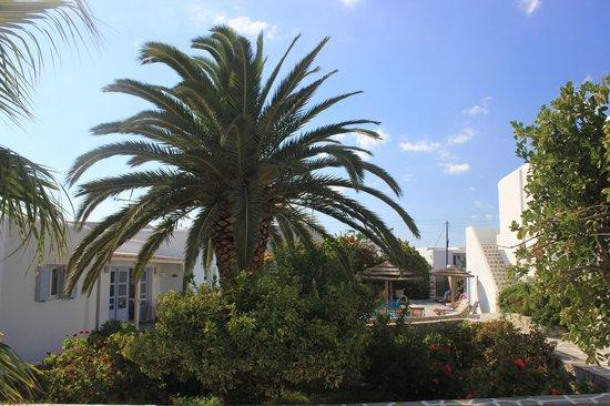 Aeolos Mykonos Hotel: Aussicht vom Zimmer