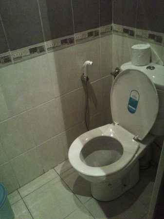 Colombo City Hotel: WC. Tight space.