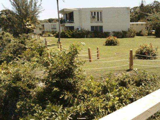 Carib-Ocho Rios: Building beside ours.