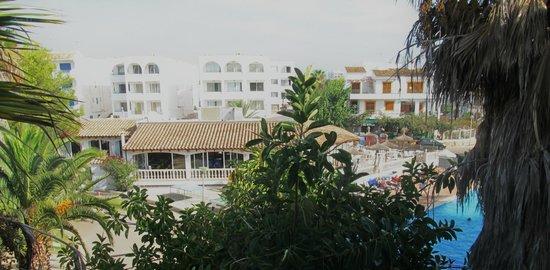 Ola Aparthotel Cecilia: View