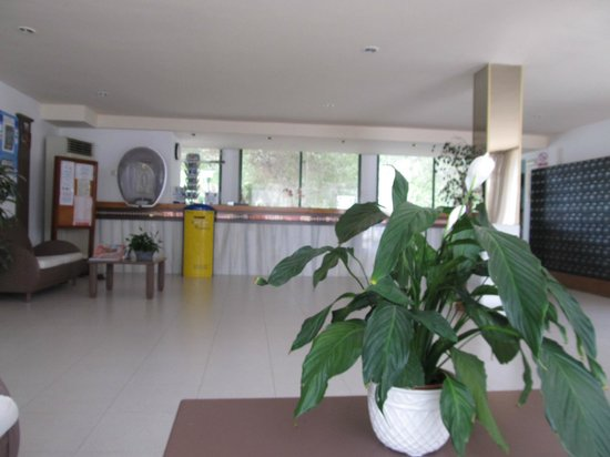 Ola Aparthotel Cecilia: Reception