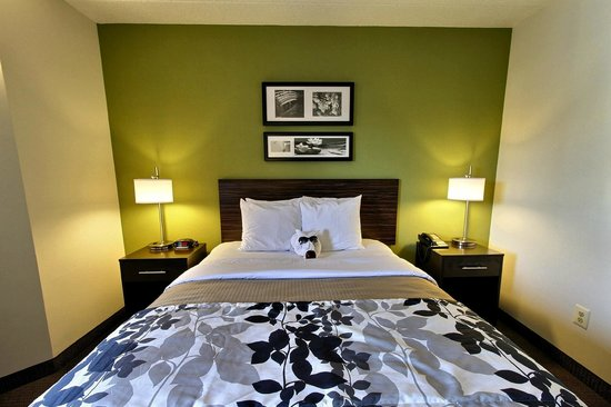 Sleep Inn Salisbury : Queen Handicap Guest Room