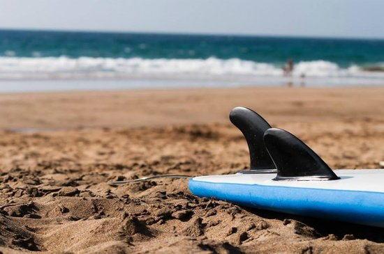 Mosquito Surf: Surf School