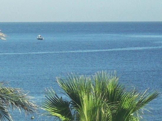 Miramar Pirate's Gate : view
