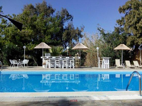 Home Hotel: piscine de l'hôtel