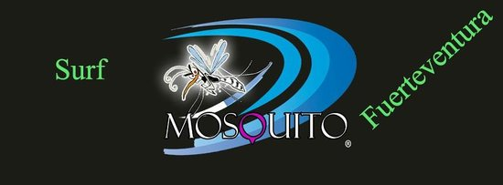 Mosquito Surf: Our Mosquito