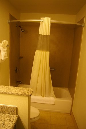 Best Western Palm Court Inn: salle de bain