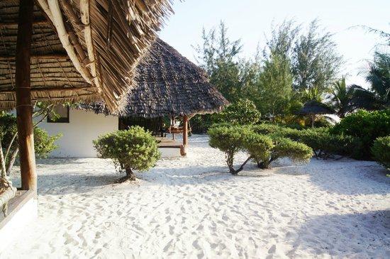 Hakuna Majiwe Beach Lodge: vista dalla stanza