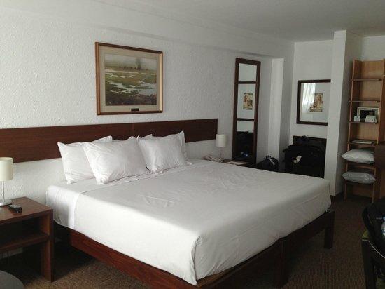 Tierra Viva Arequipa Plaza Hotel: Habitación suite