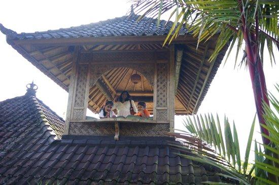Bali Mountain Retreat: cafeteria