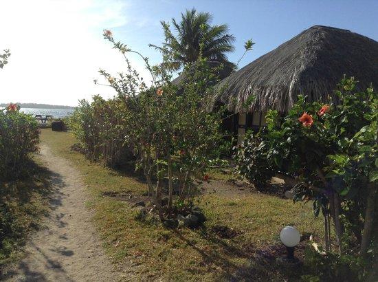 Bora Bora Ecolodge : jardin