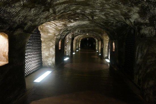 C La Vigne- Authentic Champagne Tour : Moet and Chandon Cellars