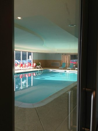 Home2 Suites by Hilton Nashville Airport: Inside Pool