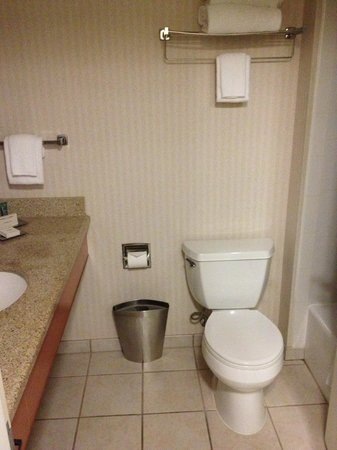 Hilton Seattle Airport & Conference Center : A view of the bathroom: Standard.