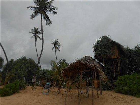 Cinnabar Resort: Die Anlage vom Strand aus