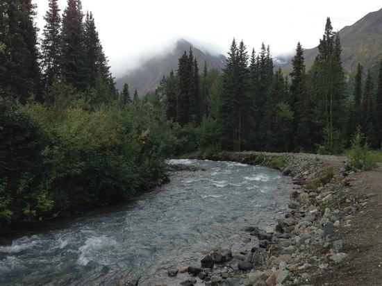 Denali Mountain Morning Hostel and Cabins: Creek