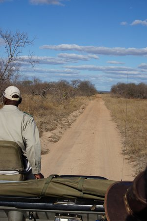 Gomo Gomo Game Lodge: Game Drive