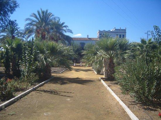 Hacienda los Jinetes: les jardins