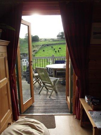 Hoe Grange Holidays: Pinder View