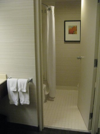 Cambridge Suites Toronto: Bathroom