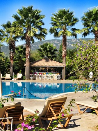 Dalyan Resort : The bar over from the pool