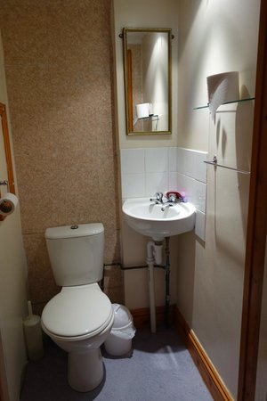 Old Palace Guest House: The bathroom is very small