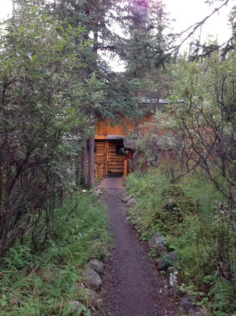 Denali Mountain Morning Hostel and Cabins: A trail to cabin
