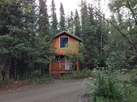 Denali Mountain Morning Hostel and Cabins : Cabin