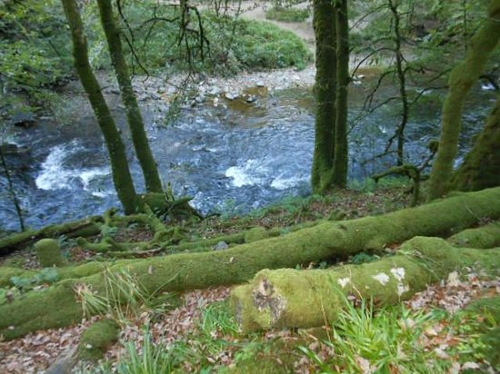 Hillside House: River walk at Tarr steps