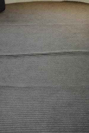 Trecarn Hotel : Carpet rm180