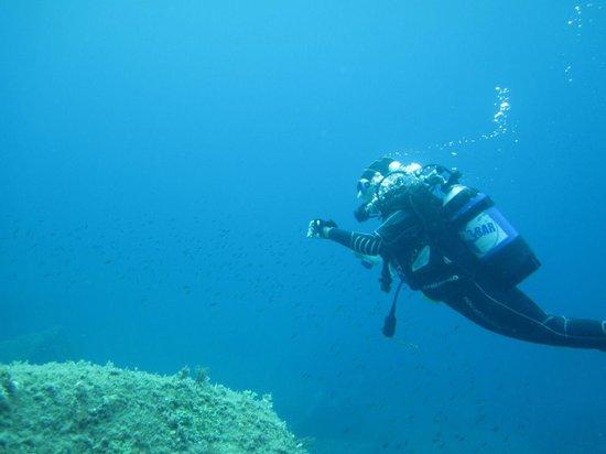 Diving Santa Teresa Gallura