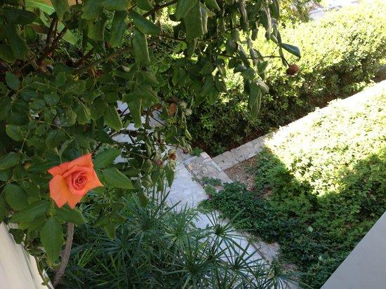 Hotel Xidas Garden: View from balcony