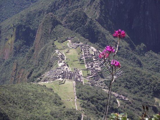Heilige Vallei, Peru: Vista de la ciudadela de Machupichu subiendo la montaña