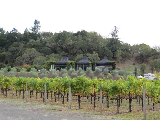 Cliff Lede Vineyards: CL