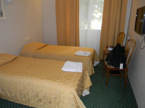 Hotel Metropolis : Room