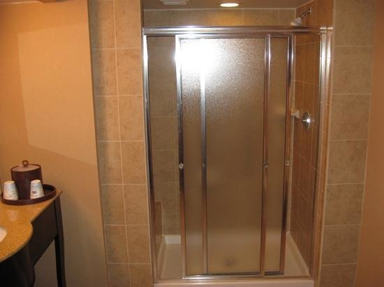 Hampton Inn Houston - Near The Galleria : Walk in shower