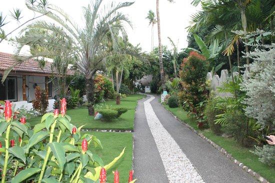 El Dorado Beach Resort: walkway