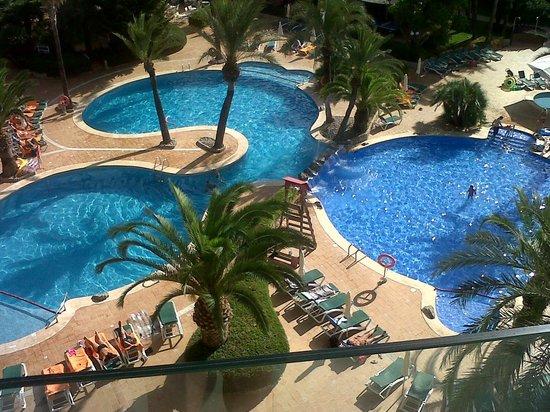 Zafiro Palmanova: pool