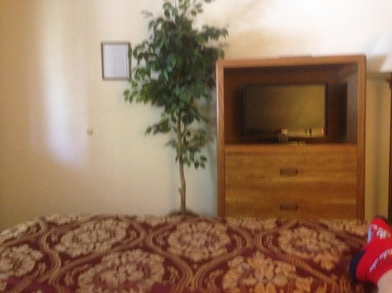 Shady Acre Motel: Well kept room with TV