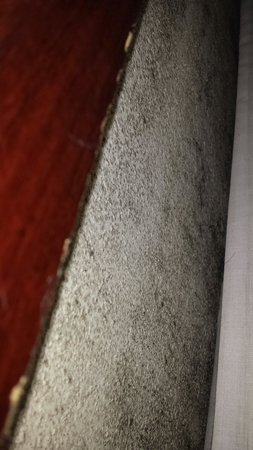 Quality Inn: Black mold behind the bed