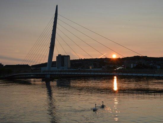 Swansea Marina : Marina at Sunset