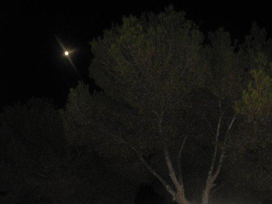 Club Santa Ponsa: Night view from patio