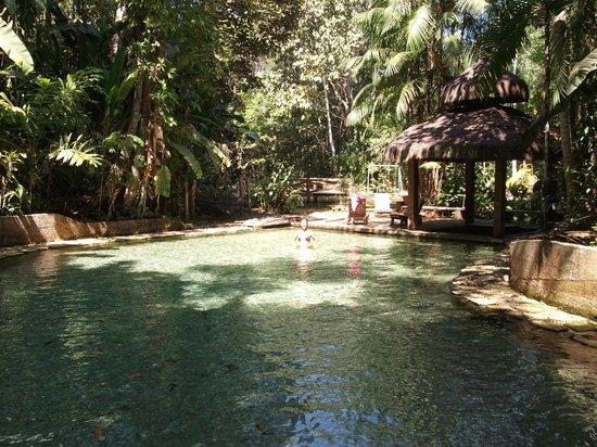 Pousada Jardim da Amazonia : the pool